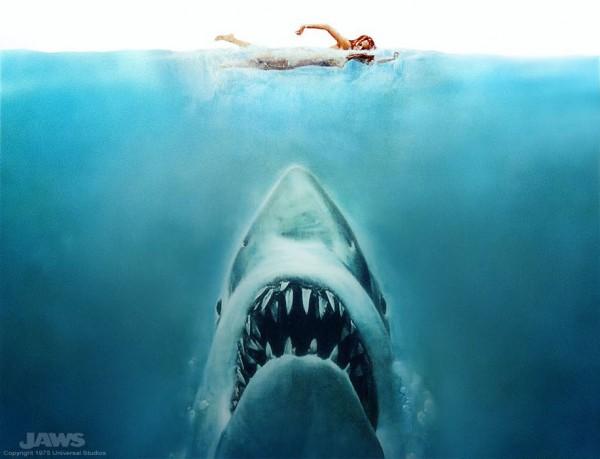 De la un rechin la altul