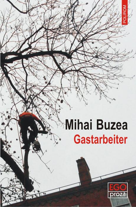 """Scriitorul Mihai Buzea: """"Am înțeles faptul că peste tot în lume se fură de la stat"""""""