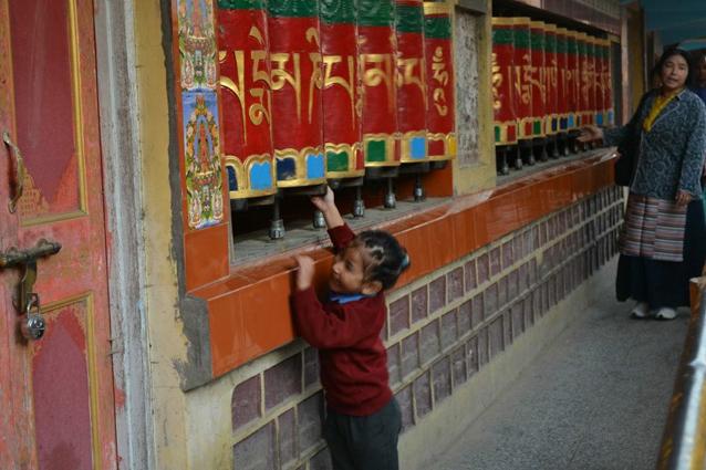 Mica Lhasa